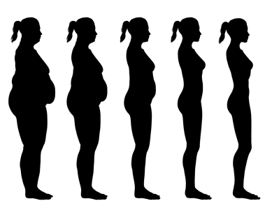 metabolické-typy